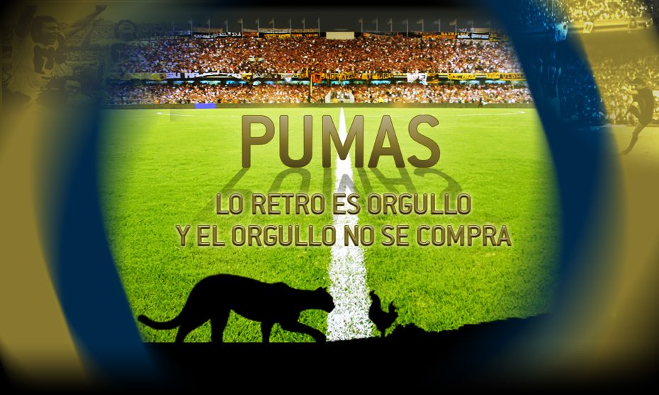 La Imagen Del Puma Les Gusta Opinen Imagen Tomada De